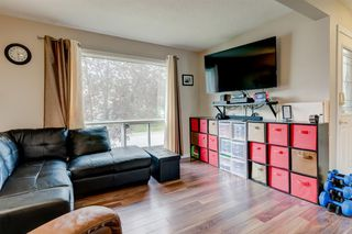 Photo 3: 15 APPLETREE Close SE in Calgary: Applewood Park Detached for sale : MLS®# A1012347