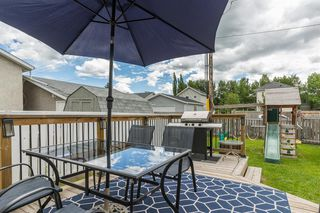 Photo 13: 15 APPLETREE Close SE in Calgary: Applewood Park Detached for sale : MLS®# A1012347