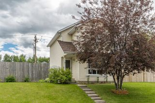 Photo 30: 15 APPLETREE Close SE in Calgary: Applewood Park Detached for sale : MLS®# A1012347