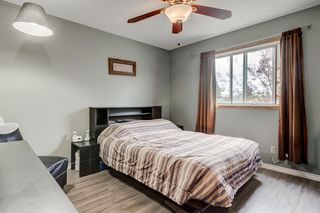 Photo 19: 15 APPLETREE Close SE in Calgary: Applewood Park Detached for sale : MLS®# A1012347