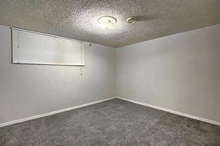 Photo 28: 10632 127 Street NW: Edmonton Detached for sale : MLS®# A1048989