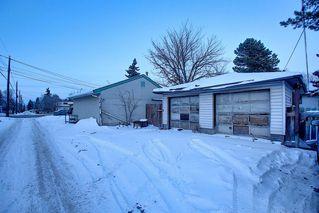 Photo 37: 10632 127 Street NW: Edmonton Detached for sale : MLS®# A1048989
