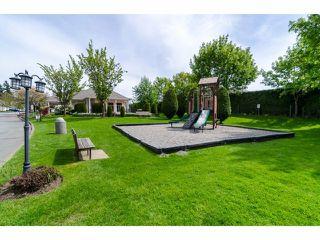 "Photo 20: 16 21928 48 Avenue in Langley: Murrayville Townhouse for sale in ""Murrayville Glen"" : MLS®# F1410648"
