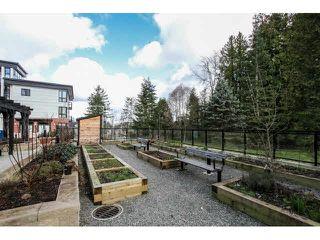 """Photo 20: 414 14358 60TH Avenue in Surrey: Sullivan Station Condo for sale in """"LATITUDE"""" : MLS®# F1433037"""