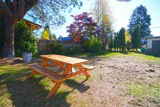 Photo 11: 755 E 12TH Street in North Vancouver: Boulevard House for sale : MLS®# R2116281