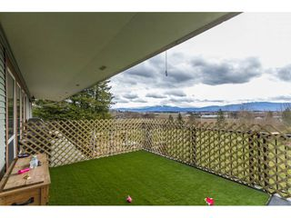Photo 15: 1030 ROSS Road in Abbotsford: Aberdeen House for sale : MLS®# R2147511