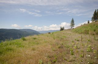 Photo 5: 8824 Oxford Road in Vernon: Adventure Bay Vacant Land for sale (North Okanagan)  : MLS®# 10066043