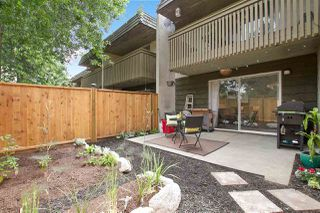 Photo 19: 22737 GILLEY Avenue in Maple Ridge: East Central Townhouse for sale : MLS®# R2186980