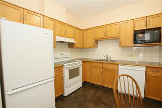 Photo 8: 213 72 QUIGLEY Drive: Cochrane Apartment for sale : MLS®# C4184046