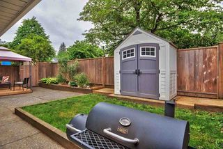 Photo 17: 36 20699 120B Avenue in Maple Ridge: Northwest Maple Ridge Townhouse for sale : MLS®# R2269955