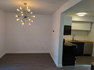 Photo 12: : St. Albert Townhouse for sale : MLS®# E4146190