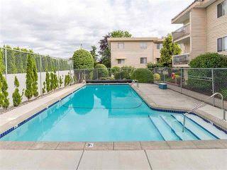 """Photo 15: 319 11816 88 Avenue in Delta: Annieville Condo for sale in """"SUN GOD VILLA"""" (N. Delta)  : MLS®# R2350836"""