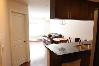 "Photo 5: 139 5660 201A Street in Langley: Langley City Condo for sale in ""PADDINGTON STATION"" : MLS®# R2353754"