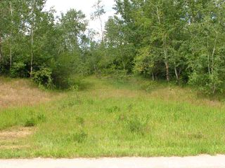 Photo 4: 56503 Rge Rd 231: Rural Sturgeon County Rural Land/Vacant Lot for sale : MLS®# E4150576