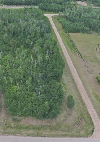 Photo 3: 56503 Rge Rd 231: Rural Sturgeon County Rural Land/Vacant Lot for sale : MLS®# E4150576
