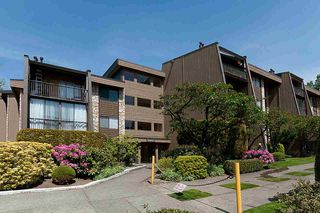 """Main Photo: 203 9101 HORNE Street in Burnaby: Government Road Condo for sale in """"WOODSTONE PLACE"""" (Burnaby North)  : MLS®# R2361627"""
