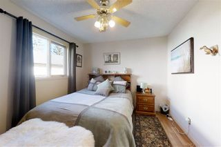 Photo 14: 4420 33 Street in Edmonton: Zone 30 House for sale : MLS®# E4153339
