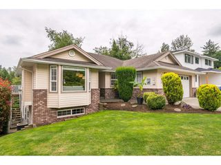 Photo 1: 36038 MARSHALL Road in Abbotsford: Abbotsford East House for sale : MLS®# R2385508