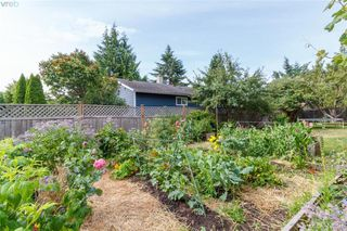 Photo 23: 6525 Golledge Ave in SOOKE: Sk Sooke Vill Core Single Family Detached for sale (Sooke)  : MLS®# 820262