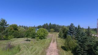 Photo 31: 56330 HWY 757: Rural Lac Ste. Anne County House for sale : MLS®# E4166898