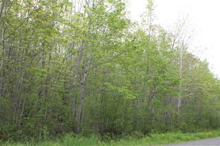 Photo 2: Lot Greenland in Greenland: 400-Annapolis County Vacant Land for sale (Annapolis Valley)  : MLS®# 201917847