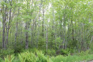 Photo 3: Lot Greenland in Greenland: 400-Annapolis County Vacant Land for sale (Annapolis Valley)  : MLS®# 201917847