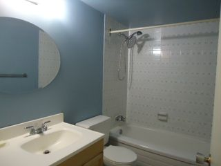 Photo 6:  in Edmonton: Zone 14 Condo for sale : MLS®# E4205877