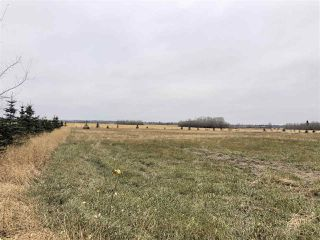 Photo 2: TWP RD 583 Range Rd 271: Rural Westlock County Rural Land/Vacant Lot for sale : MLS®# E4218433