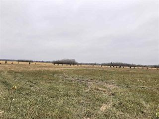 Photo 6: TWP RD 583 Range Rd 271: Rural Westlock County Rural Land/Vacant Lot for sale : MLS®# E4218433