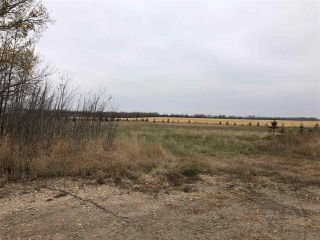 Photo 21: TWP RD 583 Range Rd 271: Rural Westlock County Rural Land/Vacant Lot for sale : MLS®# E4218433