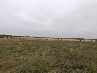 Photo 16: TWP RD 583 Range Rd 271: Rural Westlock County Rural Land/Vacant Lot for sale : MLS®# E4218433