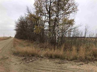 Photo 22: TWP RD 583 Range Rd 271: Rural Westlock County Rural Land/Vacant Lot for sale : MLS®# E4218433