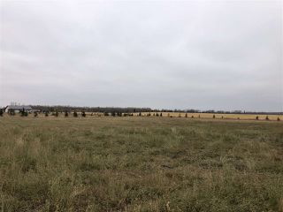 Photo 17: TWP RD 583 Range Rd 271: Rural Westlock County Rural Land/Vacant Lot for sale : MLS®# E4218433