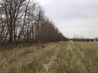 Photo 19: TWP RD 583 Range Rd 271: Rural Westlock County Rural Land/Vacant Lot for sale : MLS®# E4218433