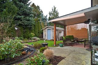 Photo 4: 6646 197 Street in Langley: Willoughby Heights House  : MLS®# F1101397