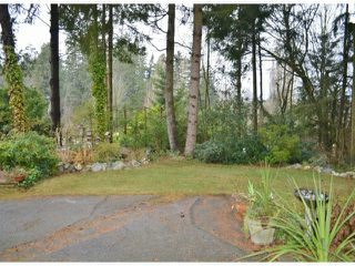 Photo 5: 2800 BAYVIEW Street in Surrey: Crescent Bch Ocean Pk. House for sale (South Surrey White Rock)  : MLS®# F1327230