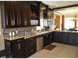 Photo 4: 12915 58B Avenue in Surrey: Panorama Ridge House for sale : MLS®# F1412325