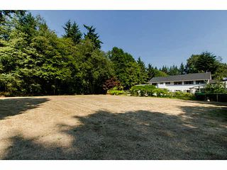 Photo 18: 3055 140 Street in Surrey: Elgin Chantrell House for sale (South Surrey White Rock)  : MLS®# F1449744