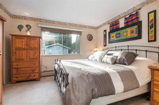 Photo 14: 20946 COOK Avenue in Maple Ridge: Southwest Maple Ridge House for sale : MLS®# R2135784