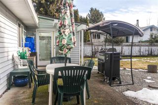 Photo 17: 20946 COOK Avenue in Maple Ridge: Southwest Maple Ridge House for sale : MLS®# R2135784