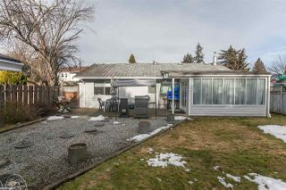 Photo 18: 20946 COOK Avenue in Maple Ridge: Southwest Maple Ridge House for sale : MLS®# R2135784