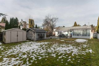 Photo 19: 20946 COOK Avenue in Maple Ridge: Southwest Maple Ridge House for sale : MLS®# R2135784