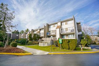 "Photo 1: 7360 CORONADO Drive in Burnaby: Montecito Townhouse for sale in ""CORONADO DRIVE"" (Burnaby North)  : MLS®# R2141805"
