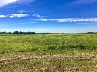 Main Photo: 50 50428 Range Road 234: Rural Leduc County Rural Land/Vacant Lot for sale : MLS®# E4074898
