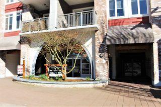 "Photo 2: 203 12350 HARRIS Road in Pitt Meadows: Mid Meadows Condo for sale in ""KEYSTONE"" : MLS®# R2246506"