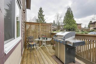 """Photo 13: 4 304 HIGHLAND Way in Port Moody: North Shore Pt Moody Townhouse for sale in """"HIGHLAND PARK"""" : MLS®# R2249831"""