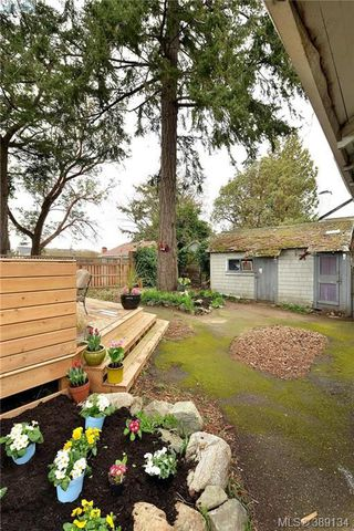 Photo 18: 412 Lampson St in VICTORIA: Es Saxe Point Single Family Detached for sale (Esquimalt)  : MLS®# 782016