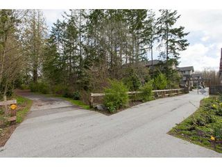 "Photo 2: 5 20967 76 Avenue in Langley: Willoughby Heights Townhouse for sale in ""NATURE'S WALK"" : MLS®# R2255141"