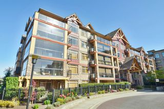 """Photo 20: 191 8288 207A Street in Langley: Willoughby Heights Condo for sale in """"Yorkson Creek"""" : MLS®# R2262181"""