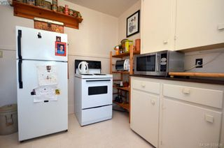 Photo 15: 3895 Hobbs St in VICTORIA: SE Cadboro Bay Multi Family for sale (Saanich East)  : MLS®# 663488